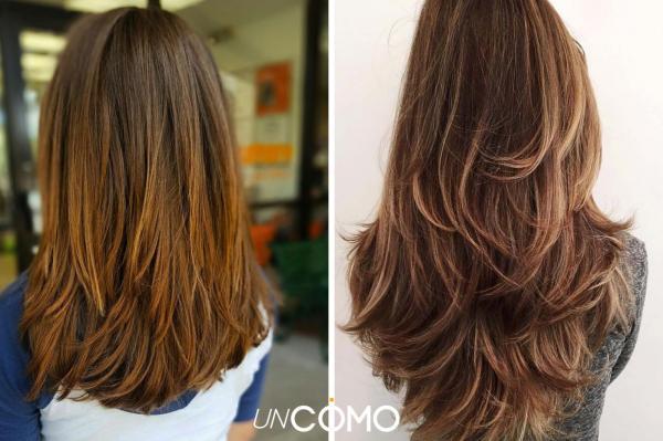 Cómo cortarse el cabello por su cuenta: ¿Cómo cortarse el cabello por su cuenta con una cola de caballo en capas?