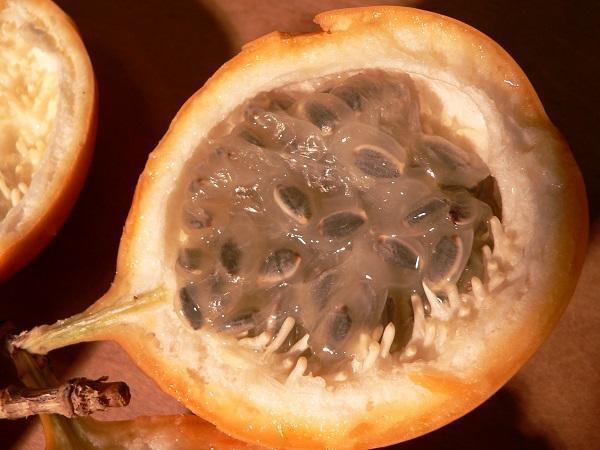 Las mejores frutas para mujeres embarazadas - Paso 2