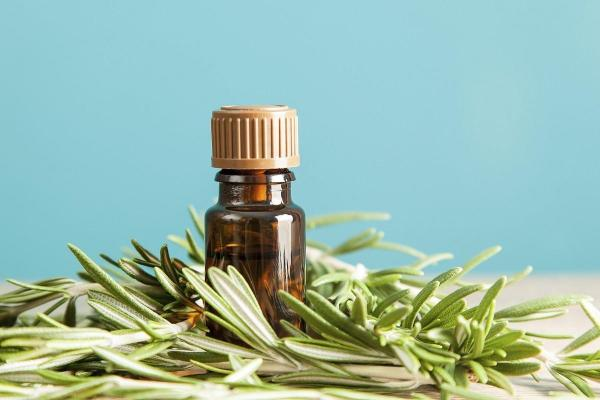 Cómo utilizar los aceites esenciales para aliviar las varices - aceite esencial de romero